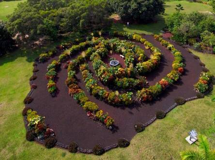 jardin_galaxia